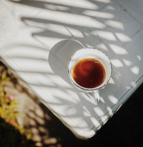 #shareyourkape #gardencoffee #snowpiercernetflix